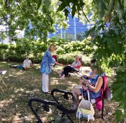 photo of a group of women in lawn chairs under a shady tree