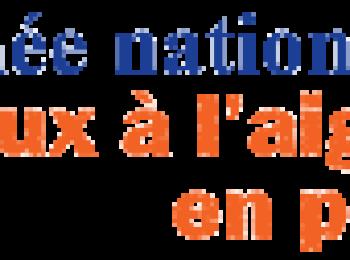 NSIP Header – French